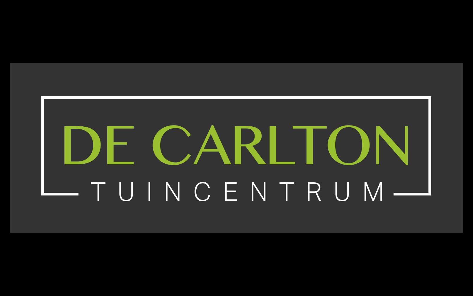 pf-de-carlton-dark